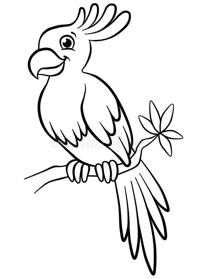 Free Cute Parrot Sitting On The Flowered Tree In The Forest Stock Images - 51374784