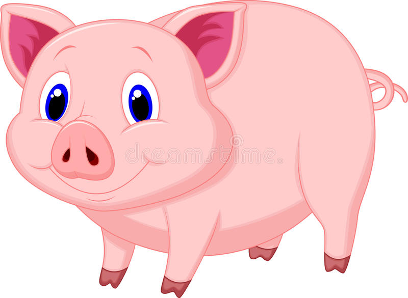 Cute pig cartoon vector illustration