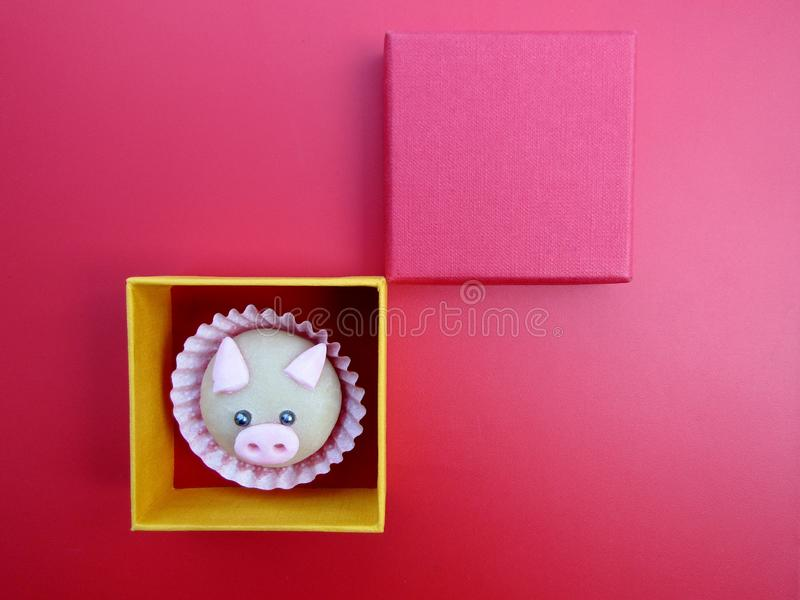 Cute pig cookie in box. Cute pig cookie inside of box royalty free stock image
