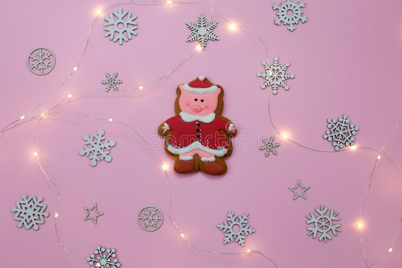 Cute Pig Cookie Gingerbread Symbol of Year and snowflakes on pink background. Christmas. Holiday Food Concept royalty free stock images