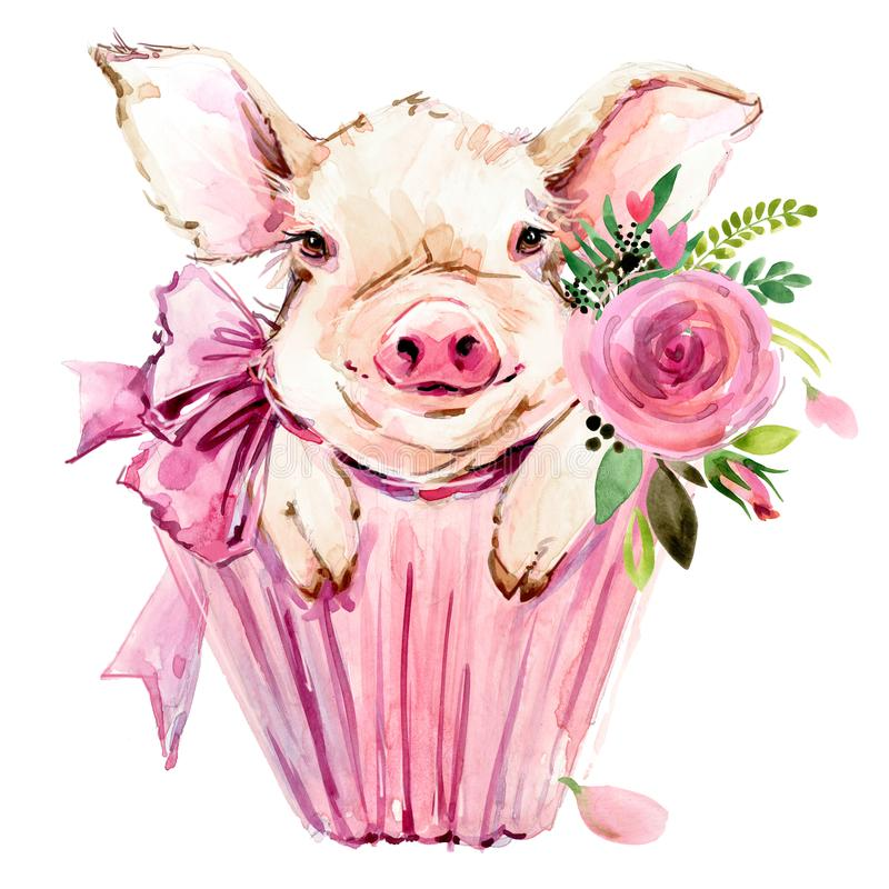 Cute pig watercolor illustration. Cute pig hand drawn watercolor illustration. Pretty piglet royalty free illustration