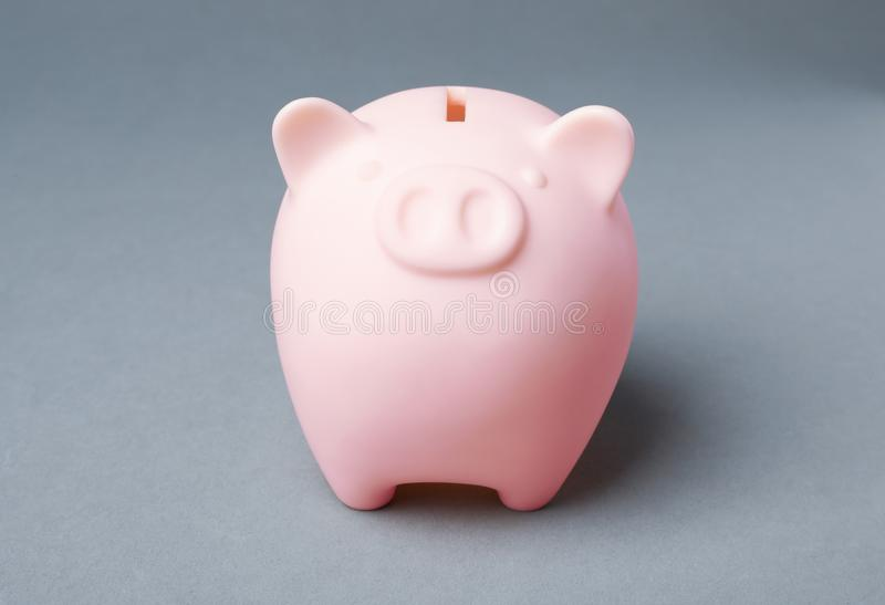Cute piggy bank. On gray background royalty free stock photo
