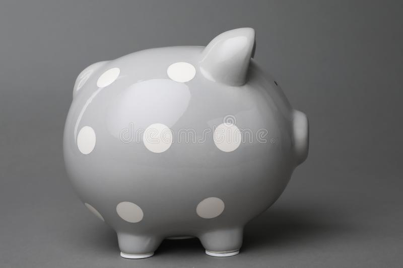 Cute piggy bank. On gray background royalty free stock photos
