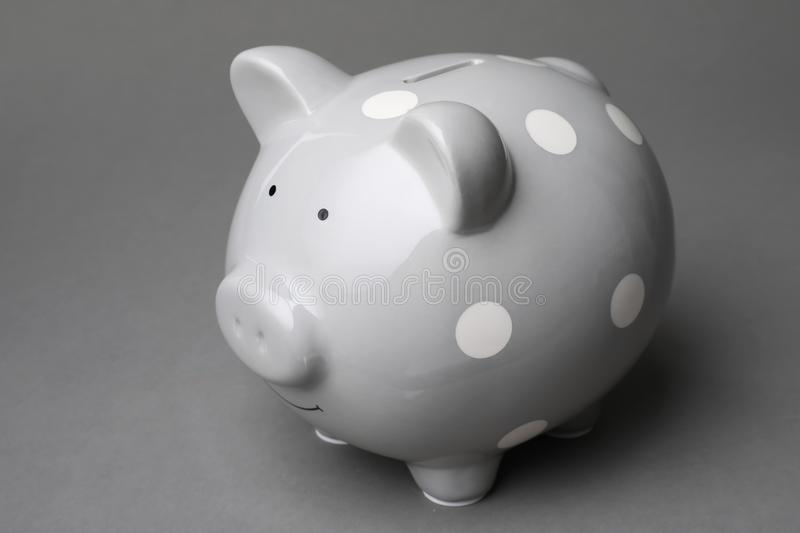 Cute piggy bank. On gray background stock photography
