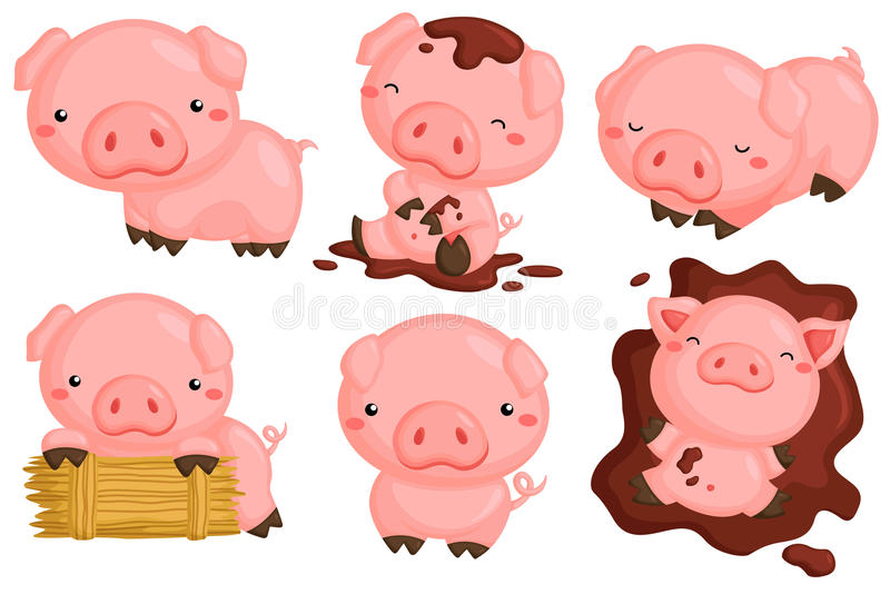Cute pigs stock illustration