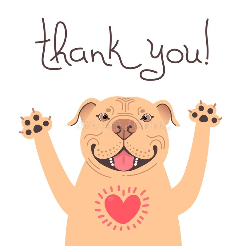 Cute Pitbull dog says thank you. American Staffordshire Pit Bull Terrier with heart full of gratitude. Vector royalty free stock image
