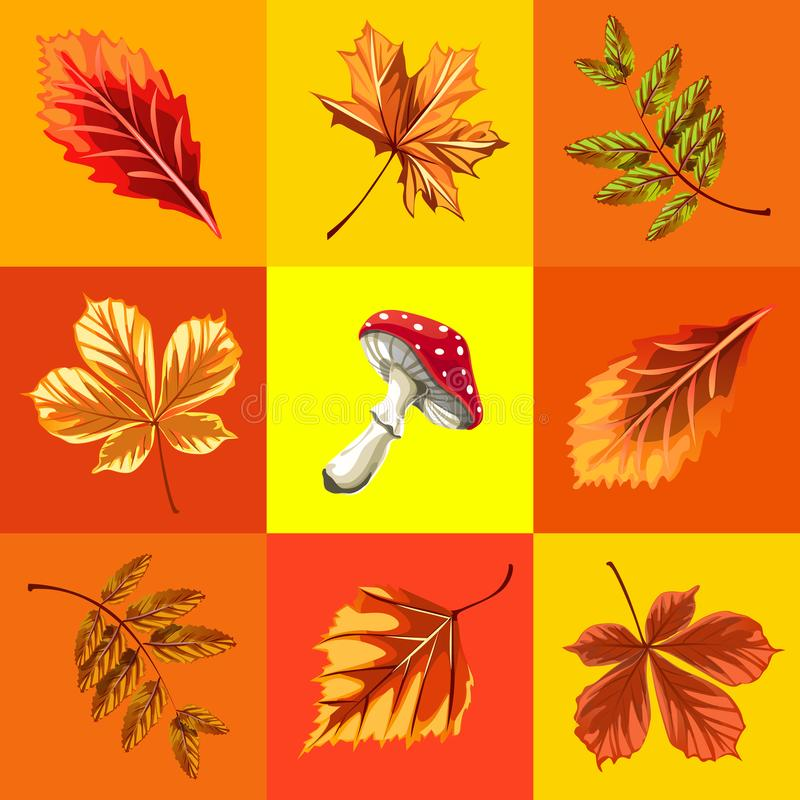 Cute poster or greeting card with modern design on theme of golden autumn. Ornate set of fallen autumn tree leaves of vector illustration