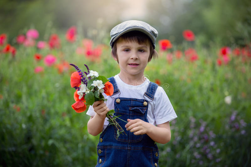 Cute preschool child in poppy field, holding a bouquet of wild f royalty free stock images