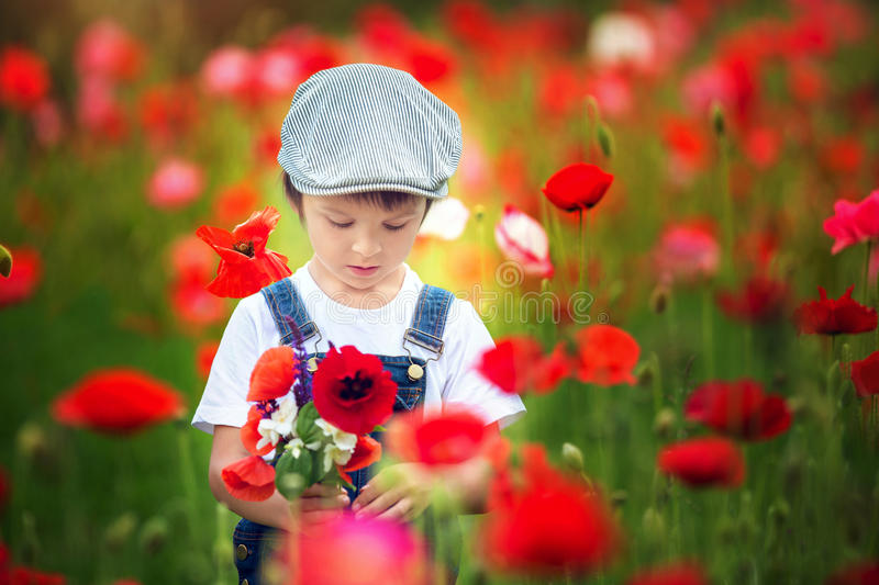 Cute preschool child in poppy field, holding a bouquet of wild f royalty free stock photography
