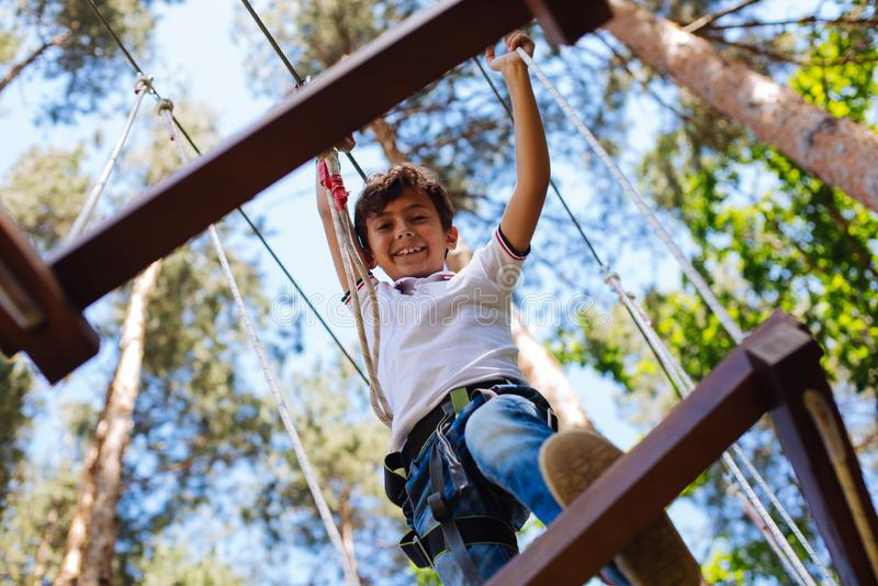 Cute preteen boy climbing at adventure park stock images