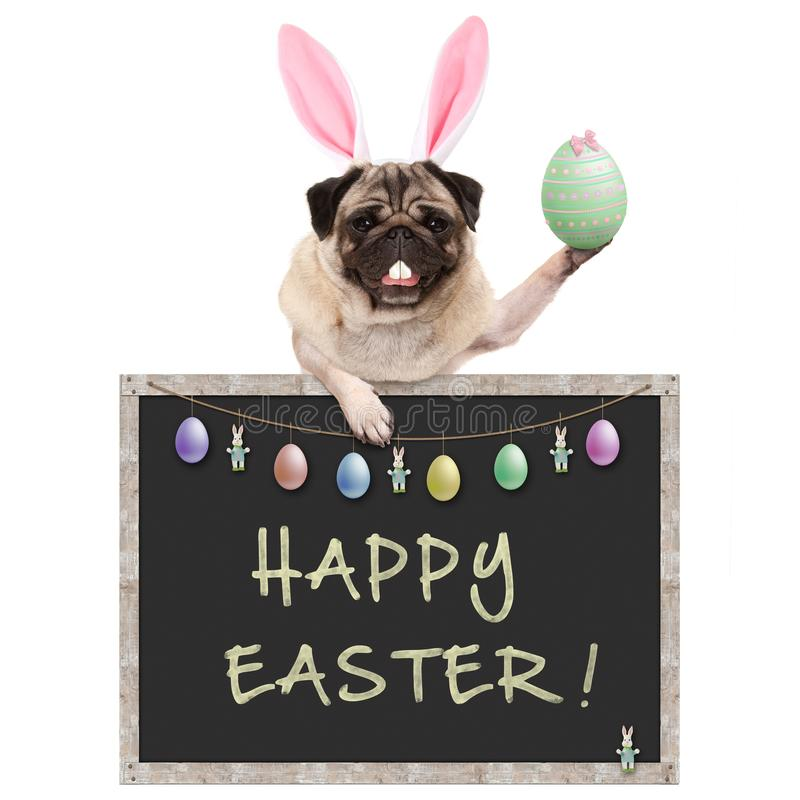 Cute pug puppy dog with bunny ears diadem, holding up easter egg hanging with paws on blackboard sign with text happy easter and d royalty free stock photos