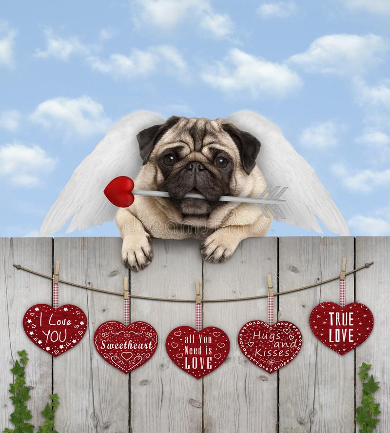 pug puppy dog with cupid angel wings and arrow, hanging on fence with wooden hearts with love text, blue sky royalty free stock photos