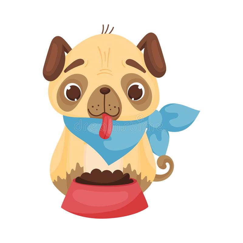 Cute pug in a blue triangular bib in front of a bowl of food. Vector illustration on white background. Cute pug with a tongue hanging out in a blue triangular vector illustration