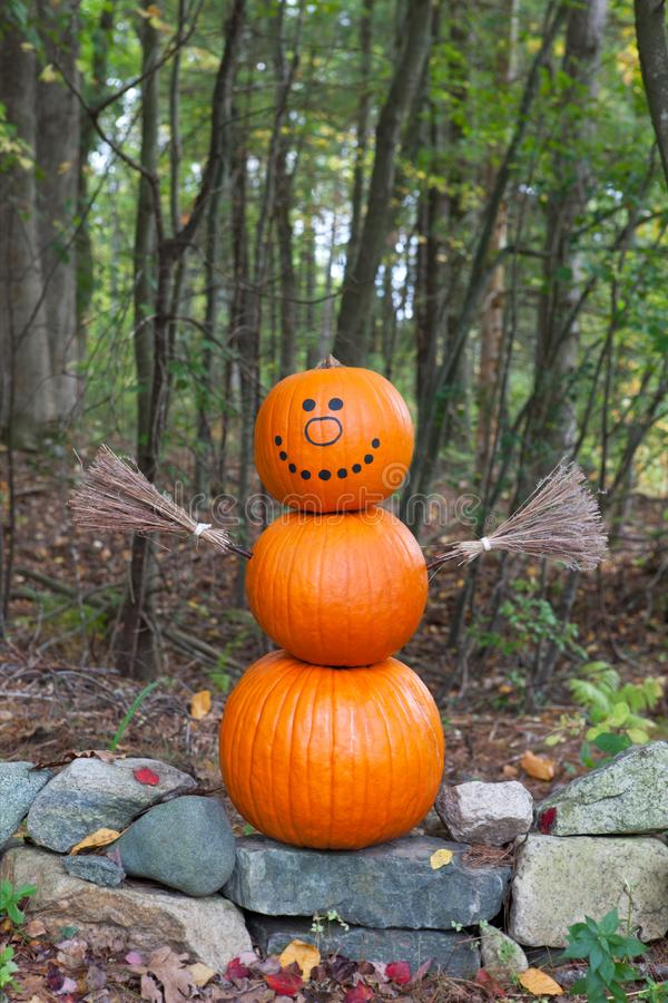 Pumpkin man in the woods stock photography