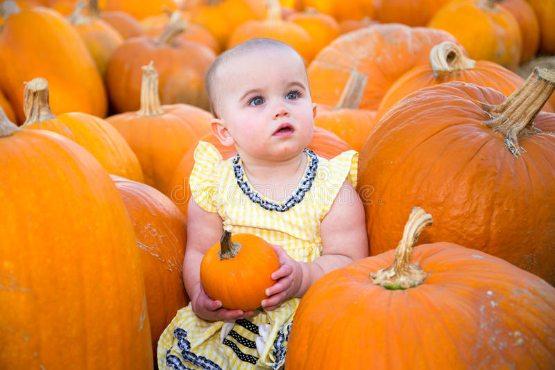 Cute Pumpkin Patch Baby stock photography