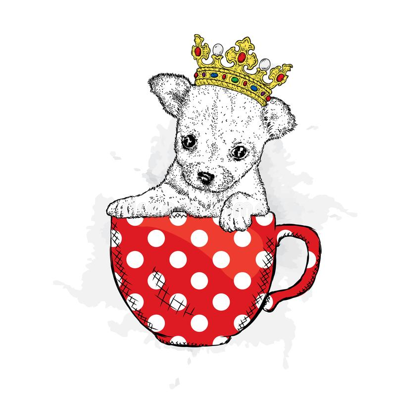 A cute puppy with a crown sits in cup. Vetch illustration for postcard or poster, print on clothes. Pedigree dog. Chihuahua. vector illustration