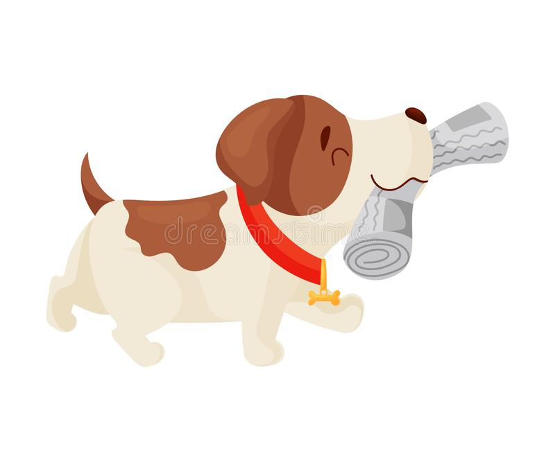 Cute puppy has a newspaper. Vector illustration on white background. royalty free illustration