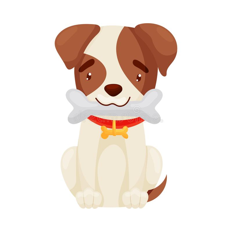 Cute puppy holds a bone in his teeth. Vector illustration on white background. vector illustration