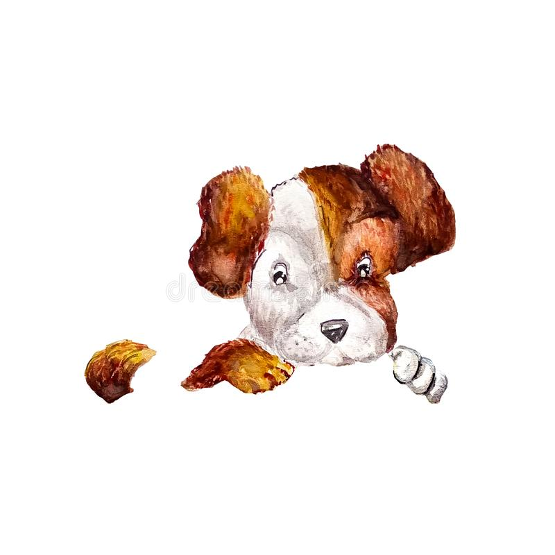 Cute puppy jack russell terrier hanging their paws over on invisible fence or place for design. Dog with adorable muzzle puppy royalty free illustration