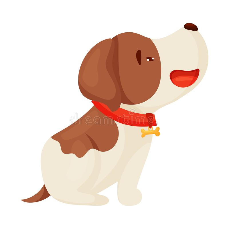Cute puppy with a red collar is sitting. Vector illustration on white background. royalty free illustration