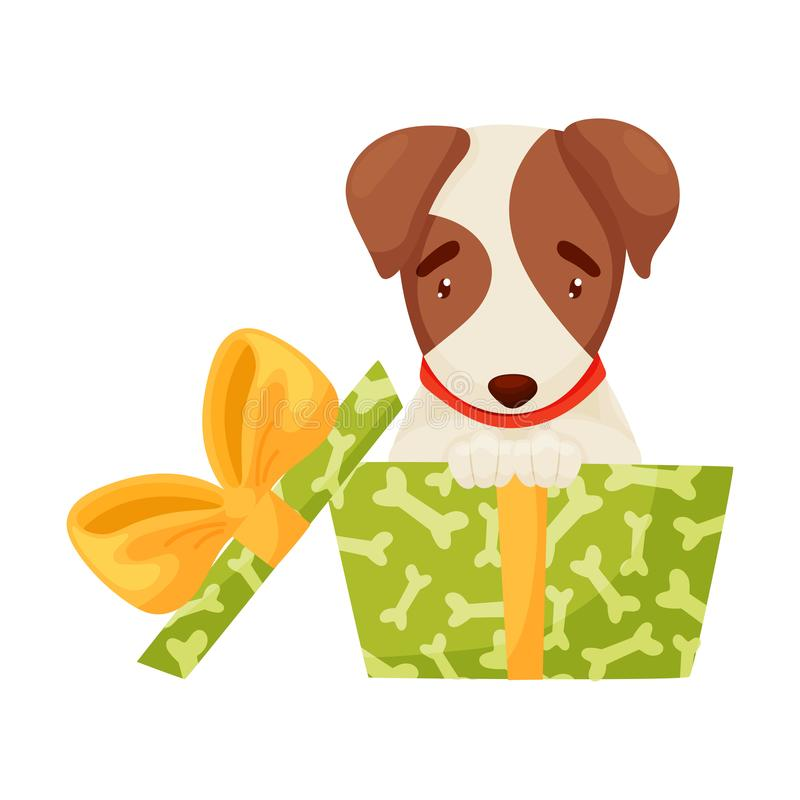 Cute puppy sitting in a green box. Vector illustration on white background. vector illustration
