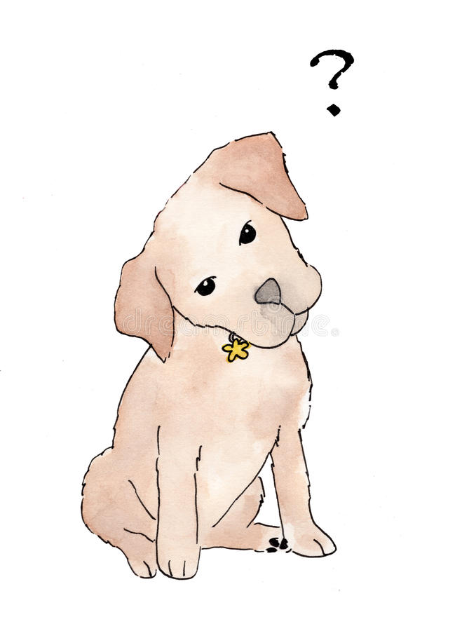 Cute puppy standing on a white background with question marks flying above royalty free illustration