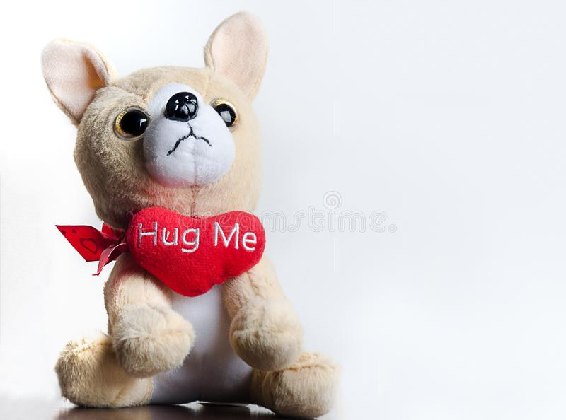 Puppy Valentines Love royalty free stock photography