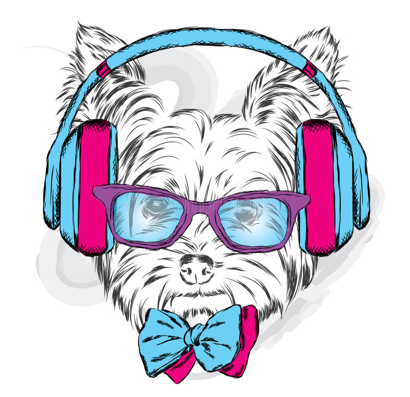 Cute puppy vector. Yorkshire terrier with headphones and sunglasses. royalty free illustration