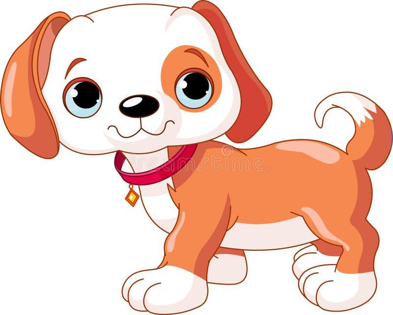 Cute Puppy Walking Stock Image