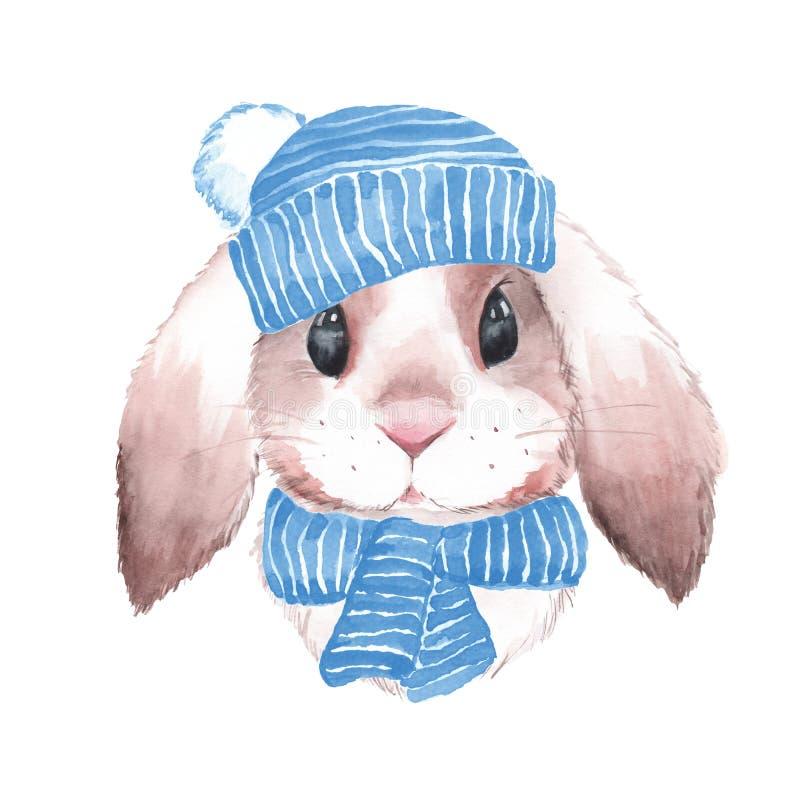 Cute rabbit in blue hat. Watercolor illustration royalty free illustration