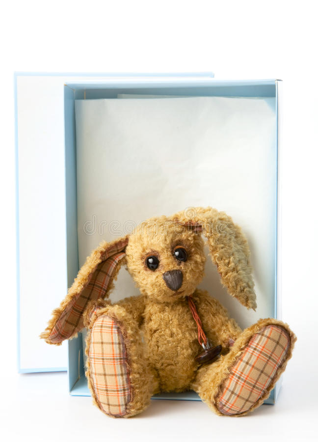 Cute rabbit bunny soft toy,sitting in a gift box, stock photo