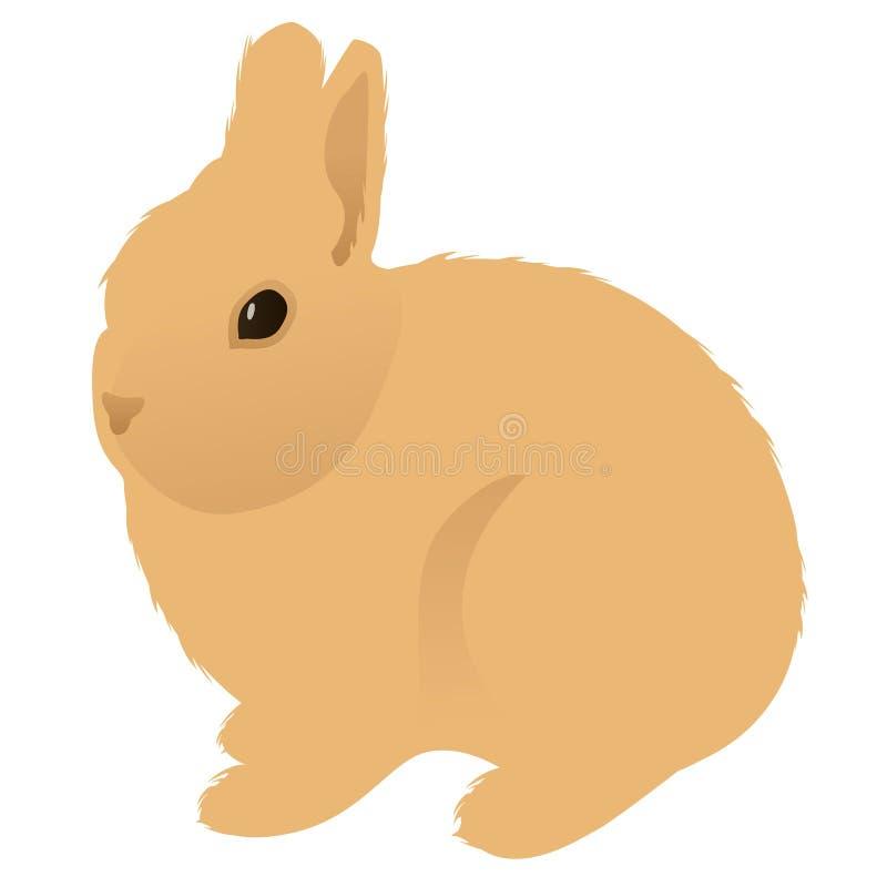 Cute, rabbit. Fluffy pet stock illustration