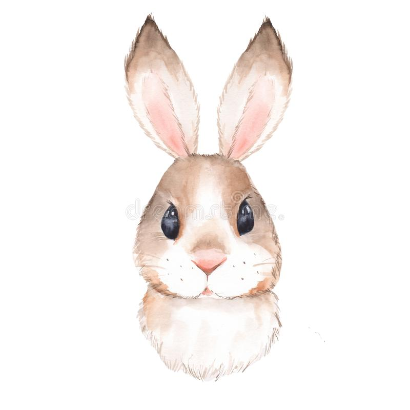 Cute rabbit 2. Cute rabbit. Watercolor illustration. Isolated on white background royalty free illustration