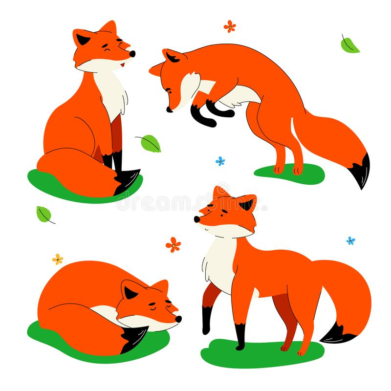 Cute red fox - flat design style set of characters stock illustration