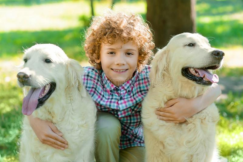 Cute redhead boy with his pets. Little kid embraces two dogs with happy faces and positive emotions. Sunny day in the park stock photos