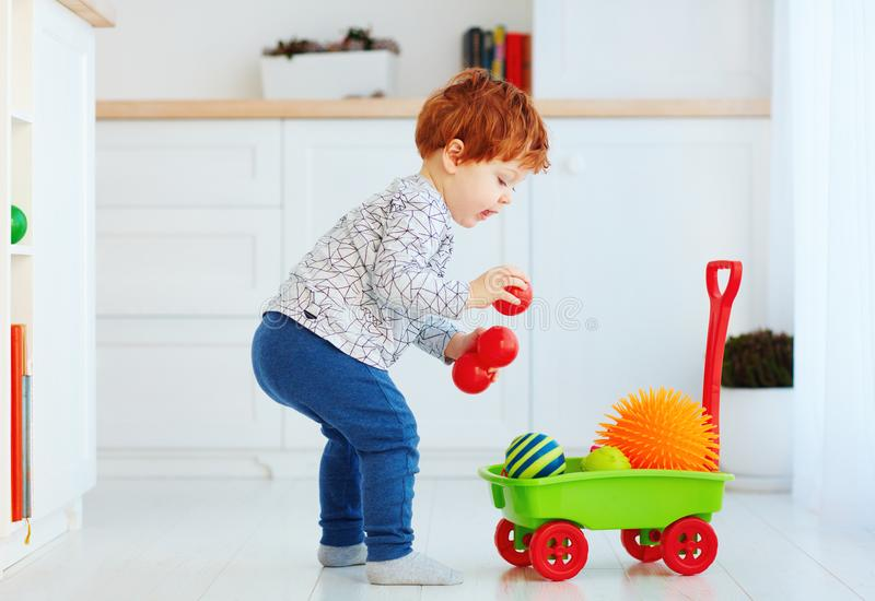 Cute redhead toddler baby collecting different balls into toy pushcart royalty free stock photo