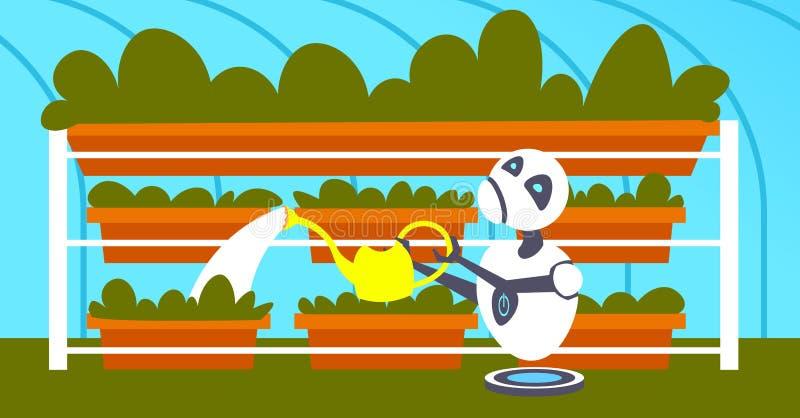 Cute robot gardener watering plants in greenhouse modern farm interior organic farming artificial intelligence stock illustration