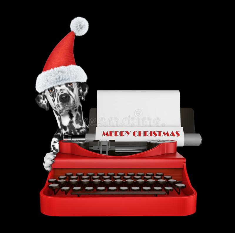 Cute santa dalmatian dog is typing on a typewriter keyboard. Isolated on black stock images