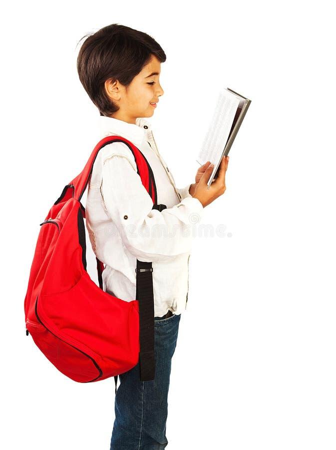 Cute schoolboy reading book royalty free stock photo