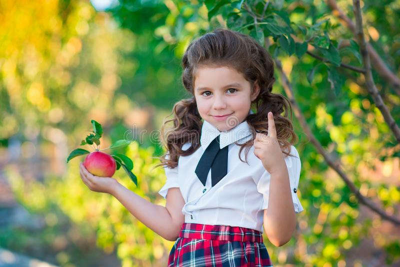 A cute schoolgirl is holding a red apple in hands, smiling at the camera. Childhood. Education. The concept of advertising and peo royalty free stock image