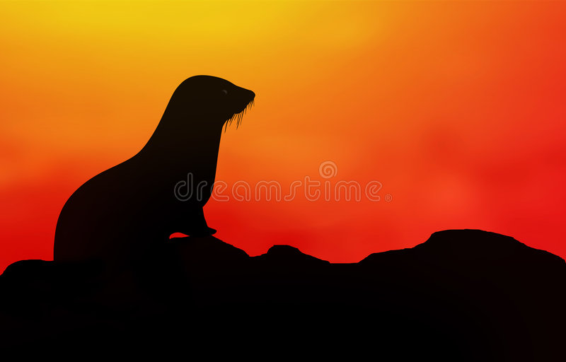 Download Cute Seal Royalty Free Stock Images - Image: 625209