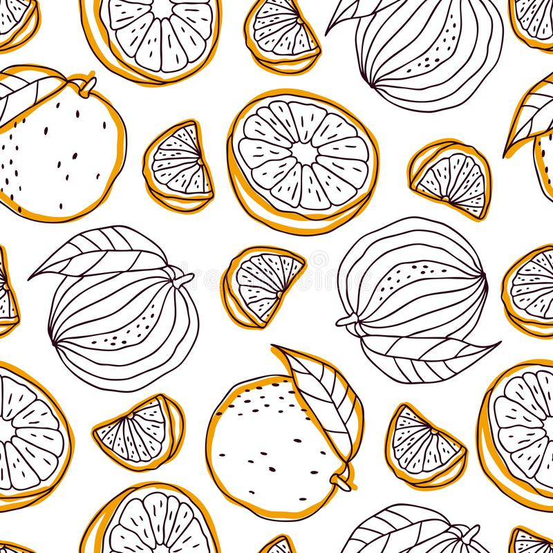 Cute seamless pattern with oranges on a white background. Sketch with oranges, summer vector illustration, template. Hand-drawn. Cute seamless pattern with royalty free illustration
