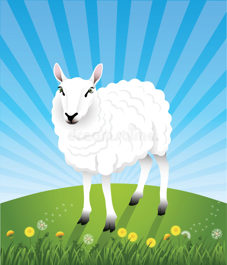 Cute_sheep vector illustratie