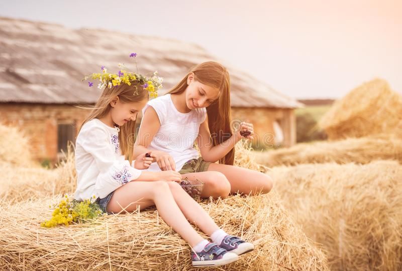 Cute sisters in the field with cherry and flowers royalty free stock image