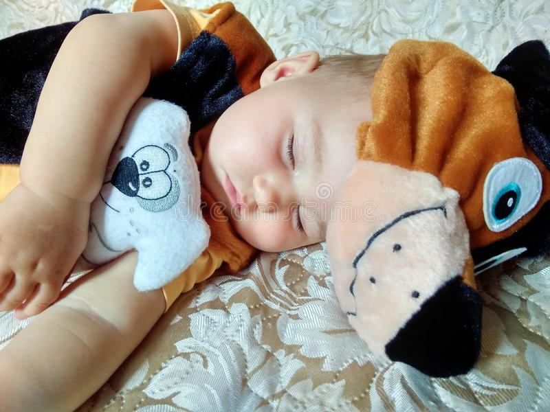 Baby in dog costume. Cute sleeping baby in dog costume with dog toy on beige background royalty free stock image