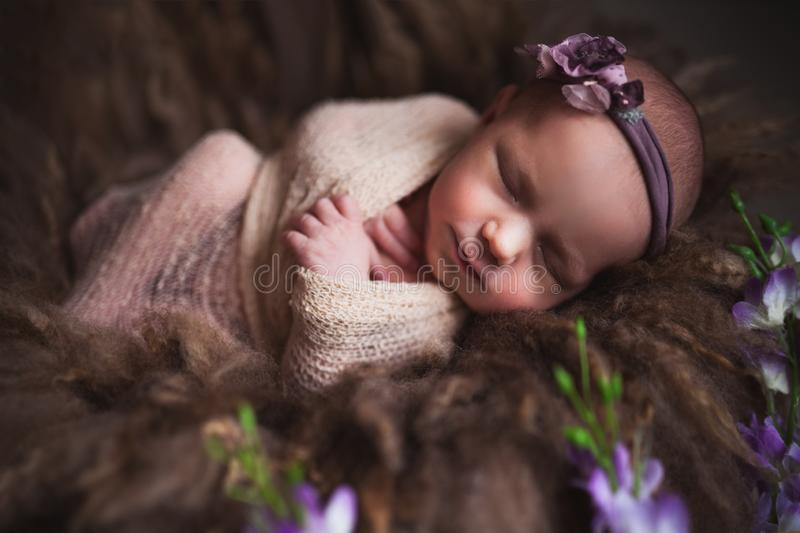 Infant baby girl sleeping at background. Newborn and mothercare concept stock photography