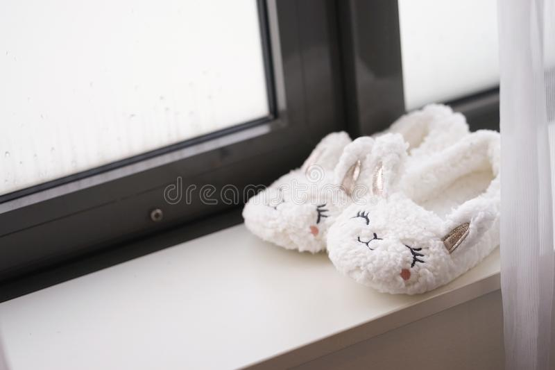 Cute slippers.  An adorable pair of fluffy bunny slippers by the stock images