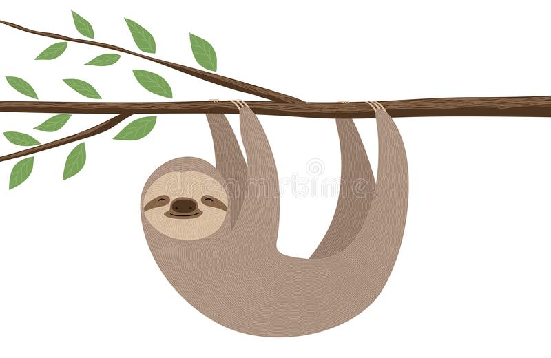 Cute sloth illustration. Illustration of cute and furry sloth hanging on a tree branch royalty free illustration