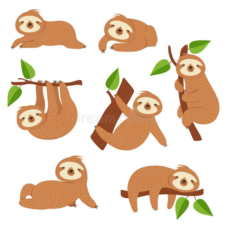 Cute sloths. Cartoon sloth hanging on tree branch. Baby jungle animal vector isolated characters. Lazy wild sloth, wildlife animal slow on tree illustration vector illustration