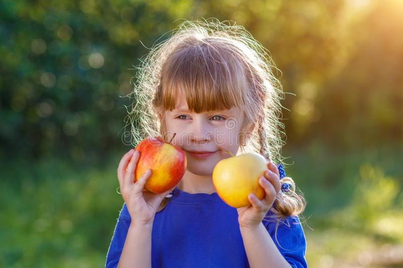 A cute smiling little girl holding ripe and juicy apples at the bright and sunny summer background. stock photography